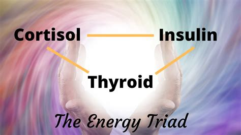Fatigue Treatment: The Energetic Triad – Scott Resnick, MD